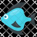 Teardrop Reef Blue Icon