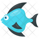 Teardrop Fish Icon