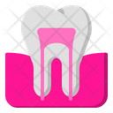 Tooth Teeth Clinic Icon