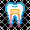 Dental Tooth Stomatology Icon