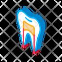 Dental Dentist Medical Icon