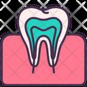 Teeth Tooth Gum Icon