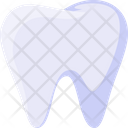 Teeth Tooth Cleaning Dentist Icon
