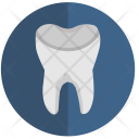 Dental Tooth Stomatology Icon