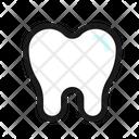Teeth Premolar Teeth Molar Premolar Icon
