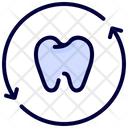 Teeth recheck Icon