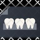 Teeth X Ray Icon