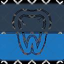Teeth X-ray Icon