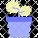 Plant Pot Office Icon
