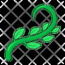 Tendril Icon