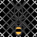 Termite Insect Bug Icon