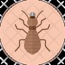 Termite Insect Pest Icon