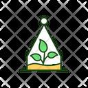 Terrarium Plant Cactus Icon