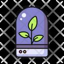 Terrarium Leaves Icon