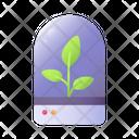 Terrarium Leaves Plant Icon