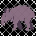The Tapir Tapirus Wild Animal Icon