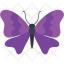 Malay Lacewing Decoration Icon
