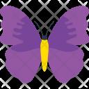 Theaa Quereus Decoration Fly Icon