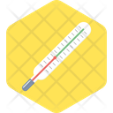 Thermometer Icon