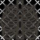 Thorax Anatomy Bones Icon