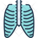 Thorax Icon