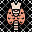Thyroid Gland Icon