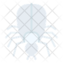 Tick Insect Bug Icon