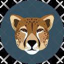 Tiger Carnivore Wild Icon