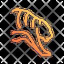 Tiger Savetiger Caretiger Icon
