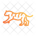 Tiger Savetiger Caretiger Icon