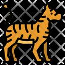 Tiger Animals Zoo Icon