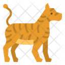 Tiger Animals Zoo Icon