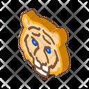 Tiger Animal Bear Icon