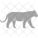 Tiger Animal Felidae Icon