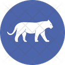 Tiger Felidae Pantherinae Icon