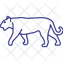 Tiger Lion Big Cat Icon