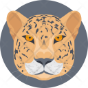 Tiger Animal Face Icon
