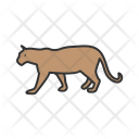 Tiger Animal Wildlife Icon