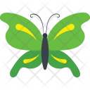 Tiger Swallowtail Butterfly Icon