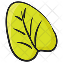 Tilia Cordata Linden Leaf Foliate Icon