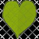 Tilia Cordata Icon