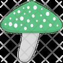 Mushroom Toadstool Edible Mushroom Icon