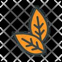 Tobacco Leaf Leaf Tobacco Icon
