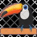 Toco Toucan Toucan Ramphastidae Icon