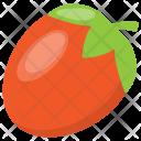 Tomato Fruit Nutrition Icon
