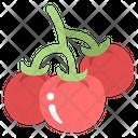 Tomatoes Farming Vegetable Icon