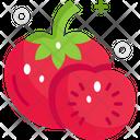 Tomatoes Tomato Healthy Icon