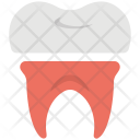 Tooth Dentistry Dentist Icon