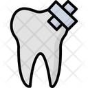 Tooth Molar Dental Care Icon