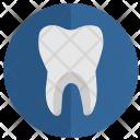 Tooth Health Stomatology Icon